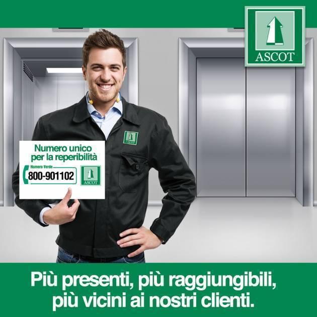 Un unico numero verde per l'assistenza: 800 901102